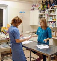 ветеринарная клиника, ветуслуги